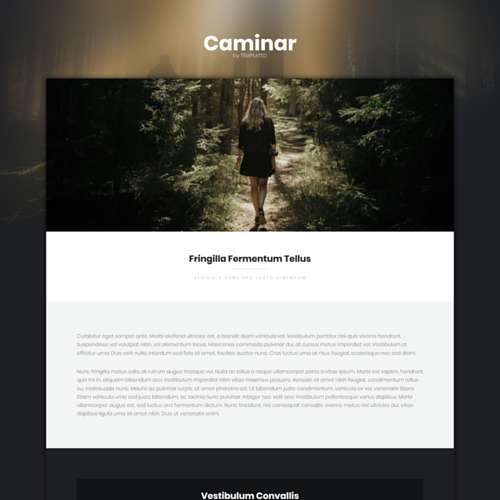 Caminar HTML Website Template