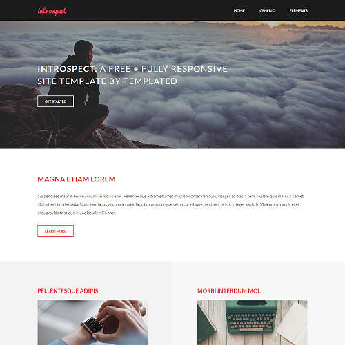 Introspect HTML Website Template